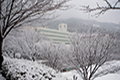 승학캠퍼스 겨울